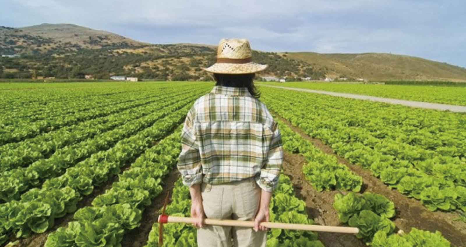 El sector agroalimentario capea la crisis del coronavirus